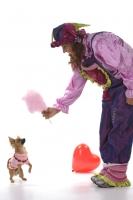 clown overijssel14.jpg